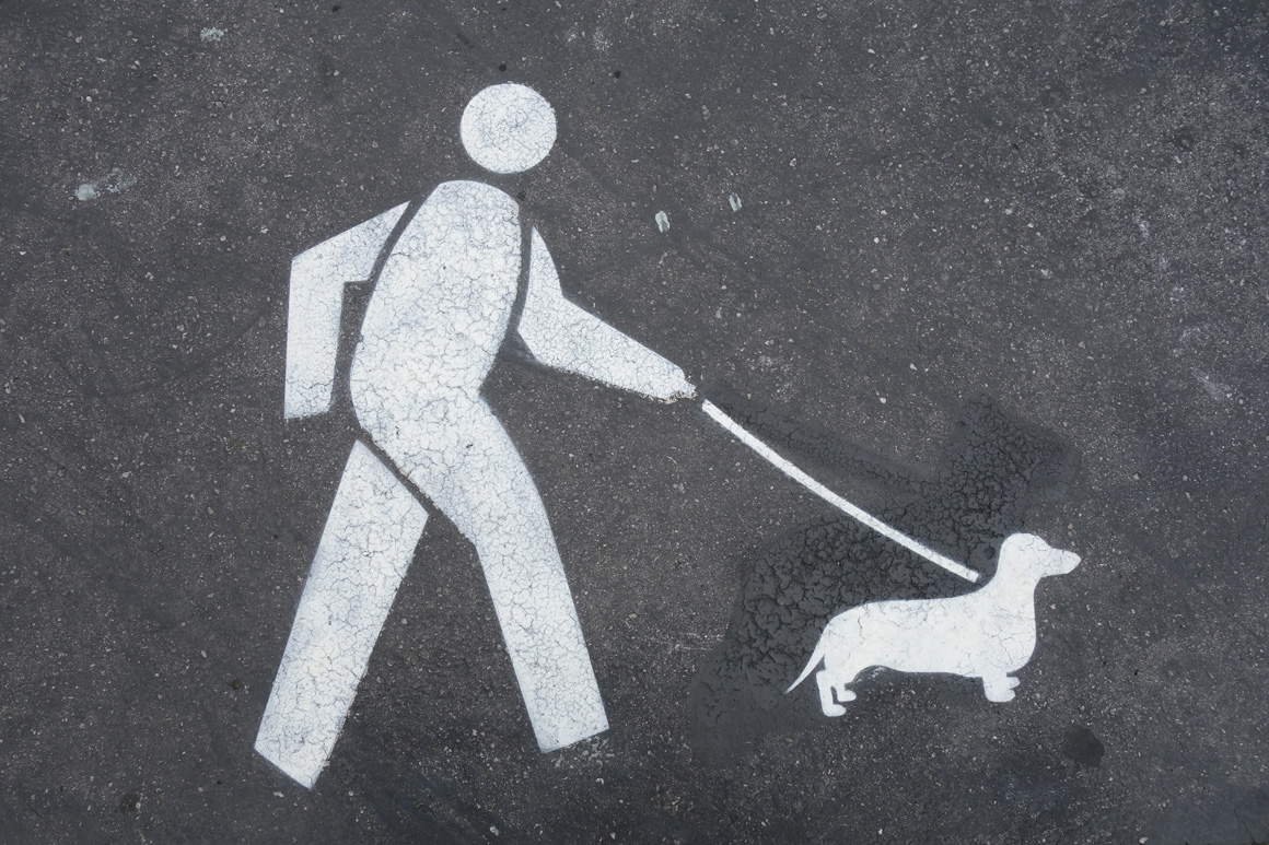 Fnnch stencil of dog walker with dachshund  in Duboce Park in San Francisco