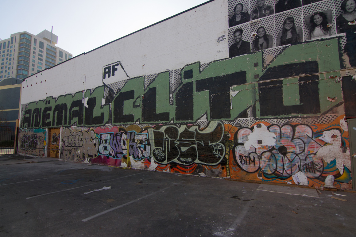 Anemal AF Graffiti in Oakland , CA in San Francisco Bay Area